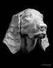 dog drawing cast, spaniel sculpture cast, spaniel mask, art reference cast, dog plaster cast for artist, dog anatomy, spaniel bust, spaniel sculpture, 3d animal reference