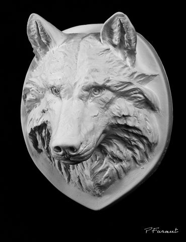 wolf drawing cast, wolf sculpture cast, wolf mask, art reference cast, wolf plaster cast for artists, wolf anatomy, wolf bust, 3d animal reference