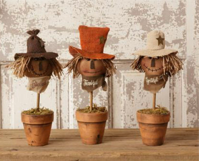 Potted Scarecrow Heads