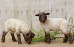 Grazing Sheep Set of Two