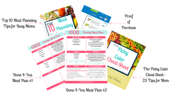 Meal Planning Bundle for Feeding a Family of 6 for Under $100 a Week