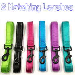 2 Matching Reflective Leash (We Match the Color For You)