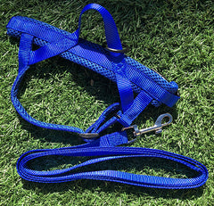 Quick Fit Dog Harness Red & Blue Blowout