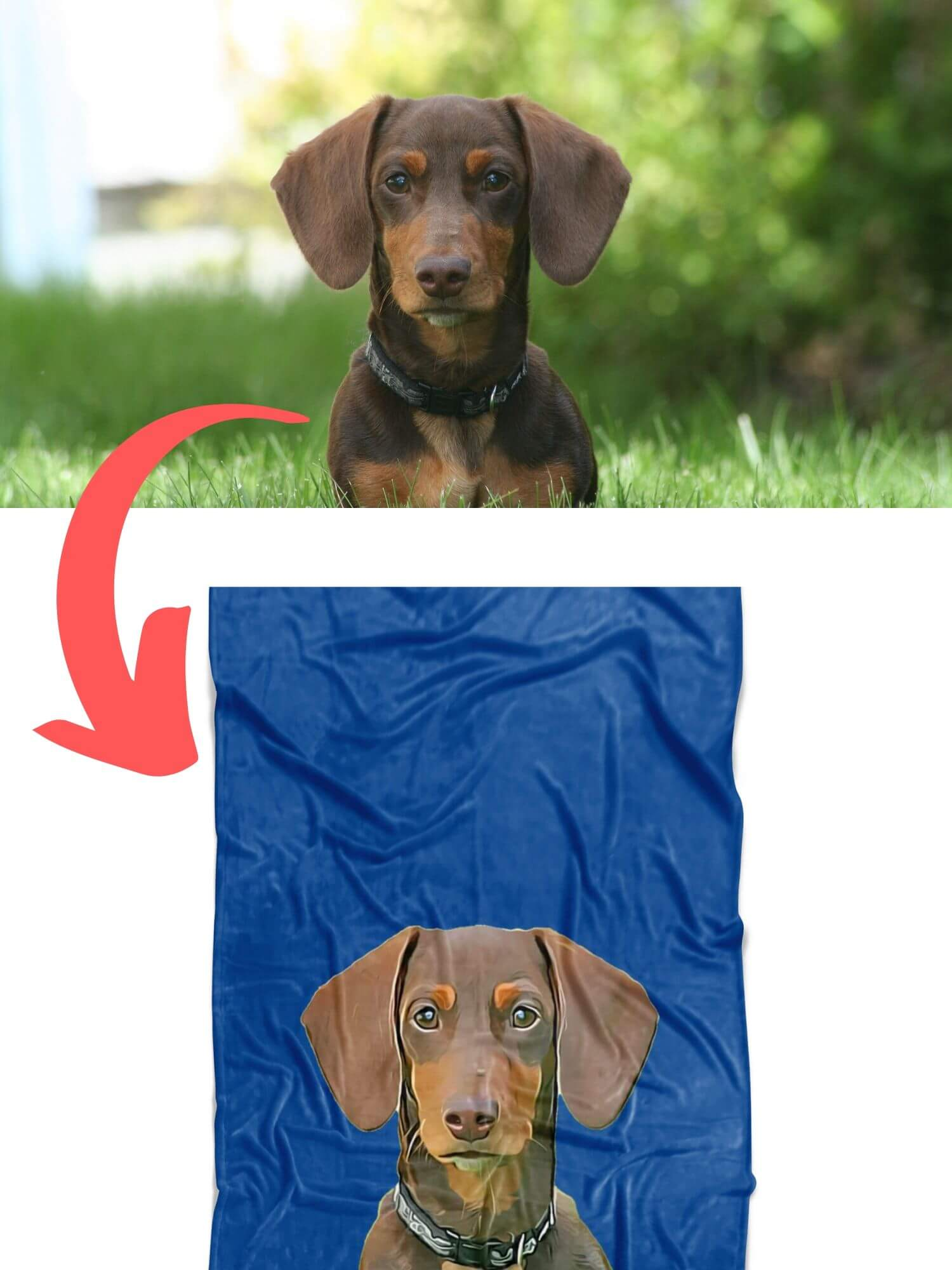 Personalized Fleece Blanket for Dogs or Humans