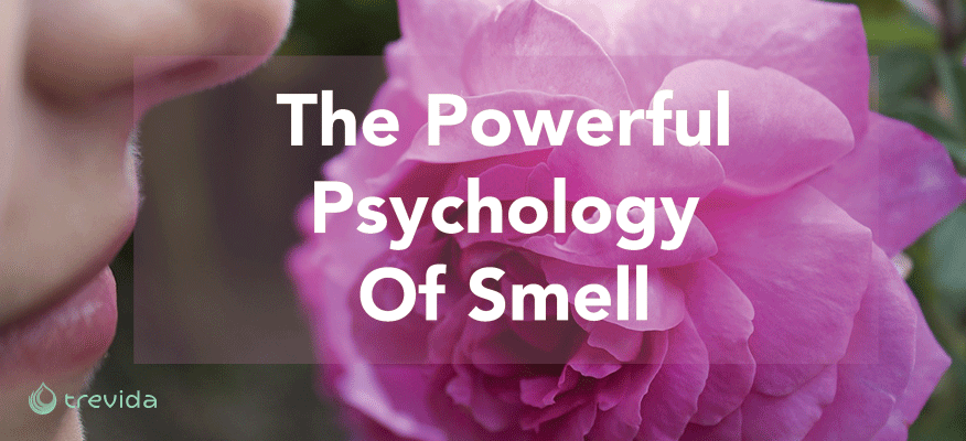 The Powerful Pyschology of Smell