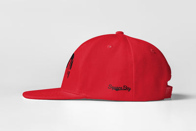 Tacoma Skyline Snap-Back - Square Boy Clothing