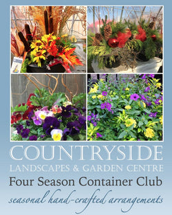 Four Season Container Club  Okotoks Calgary Garden Alberta Landscaping Trees