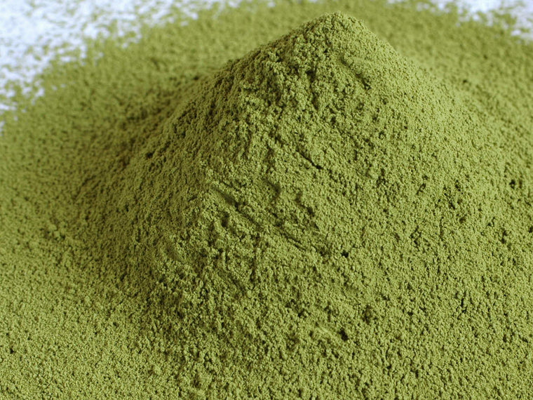 Matcha Sample 15g [Shipping Free]