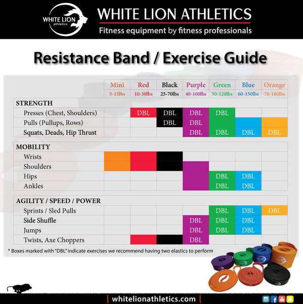 Exercise Bands For Beginners: Resistance Bands In Canada By White Lion Athletics