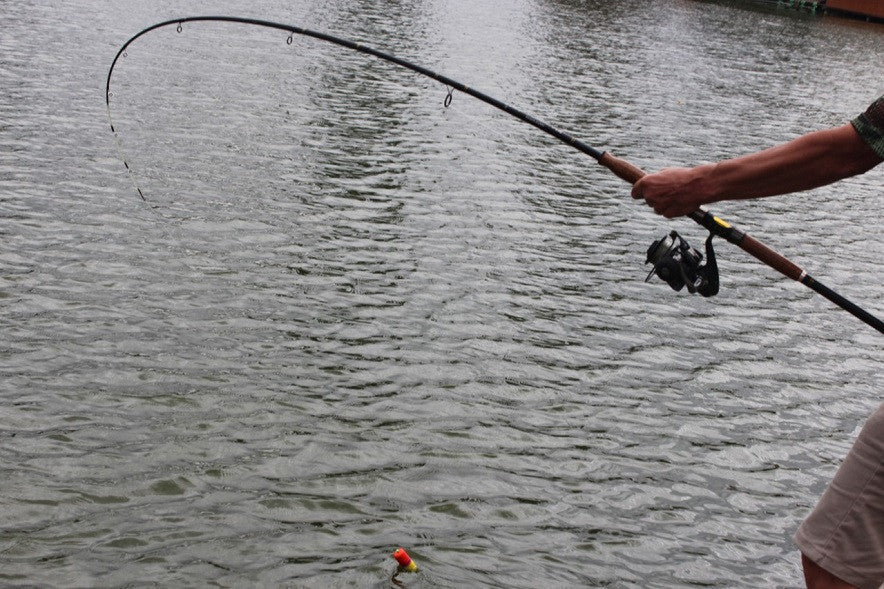 Field testing of the spiral wrap blank spinning rod RS2035-802MH