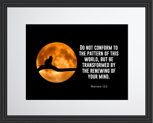 Romans 12:2 Do Not Conform Poster, Print, Picture or Framed Photograph