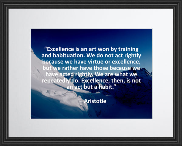 Aristotle Excellence Is An Poster, Print, Picture or Framed Photograph