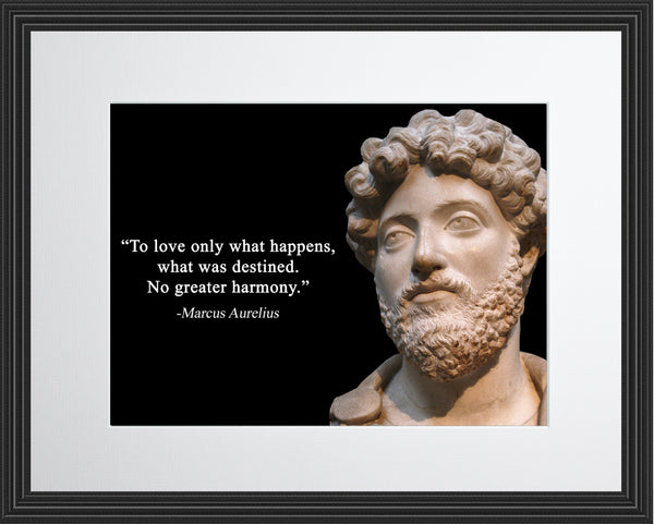 Marcus Aurelius To love only Poster, Print, Picture or Framed Photograph
