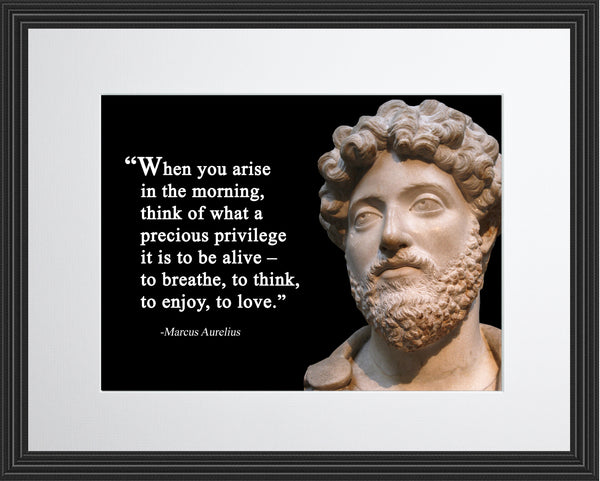 Marcus Aurelius When you arise Poster, Print, Picture or Framed Photograph