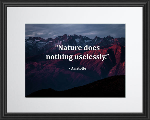 Aristotle Nature Does Nothing Poster, Print, Picture or Framed Photograph