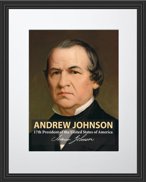 Andrew Johnson 17th President Poster, Print, Picture or Framed Photograph