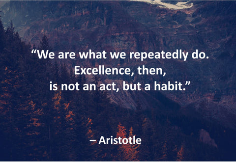 Aristotle Those Who Educate Poster, Print, Picture or Framed Photograph