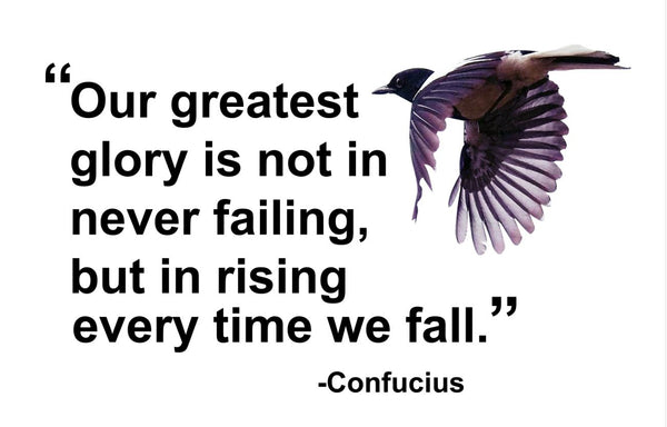 Confucius Our Greatest Glory Poster, Print, Picture or Framed Photograph