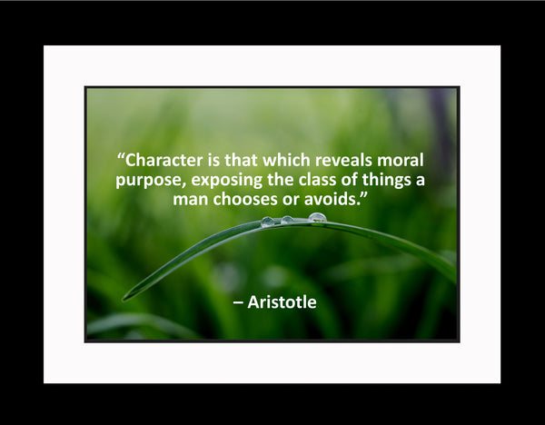 Aristotle Character Is That Poster, Print, Picture or Framed Photograph