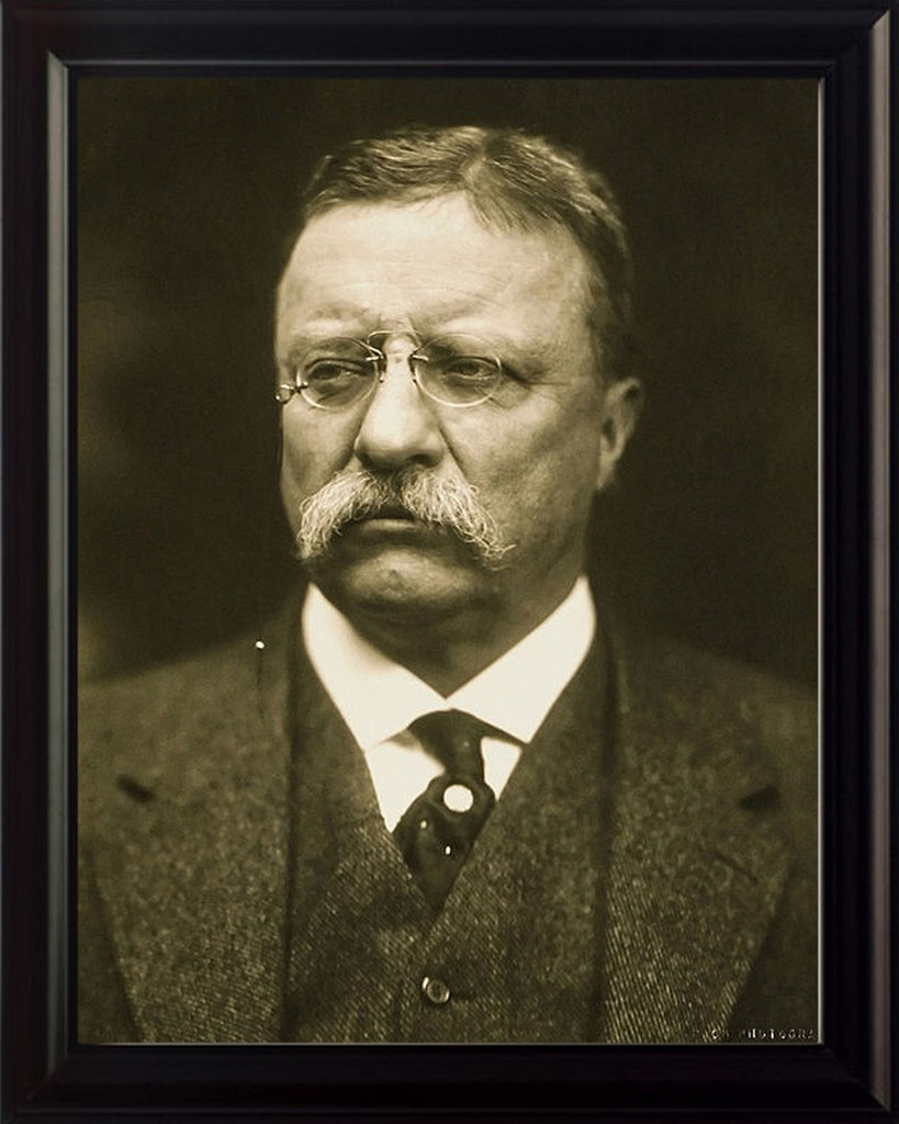 Theodore Roosevelt Framed 8x10 Photo