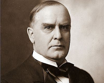 William McKinley 8x10 High Quality Photo Picture