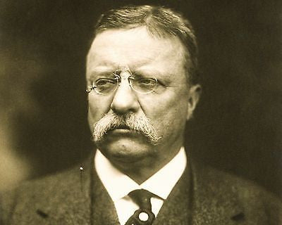 Theodore Roosevelt 8x10 High Quality Photo Picture