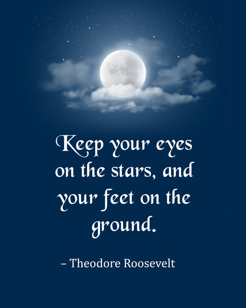 Theodore Roosevelt Keep Your Eyes Poster, Print, Picture or Framed Photograph