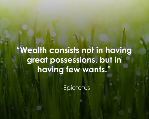 Epictetus Wealth Consists Not Poster, Print, Picture or Framed Photograph