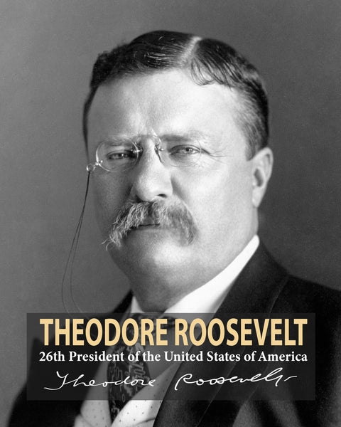 Theodore Roosevelt 26th President Poster, Print, Picture or Framed Photograph