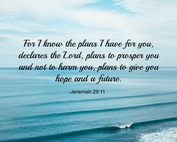Jeremiah 29:11 for I Know Poster, Print, Picture or Framed Photograph
