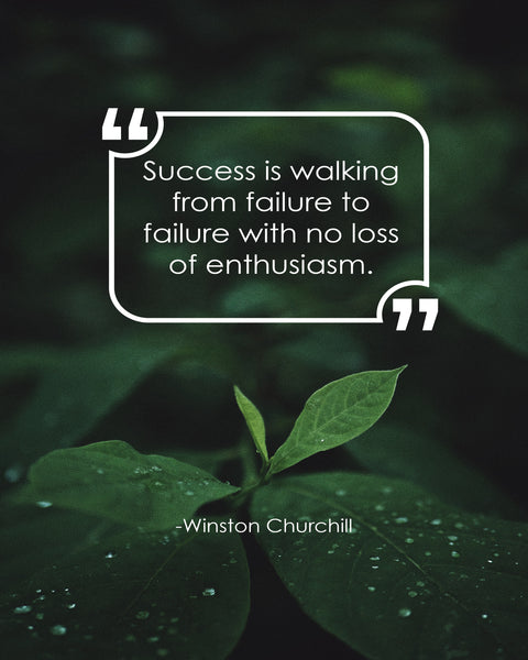 Winston Churchill Success Is Walking Poster, Print, Picture or Framed Photograph