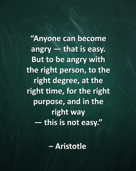 Aristotle Anyone Can Become Poster, Print, Picture or Framed Photograph