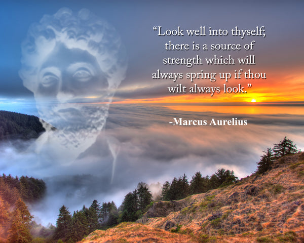 Marcus Aurelius Look well into Poster, Print, Picture or Framed Photograph