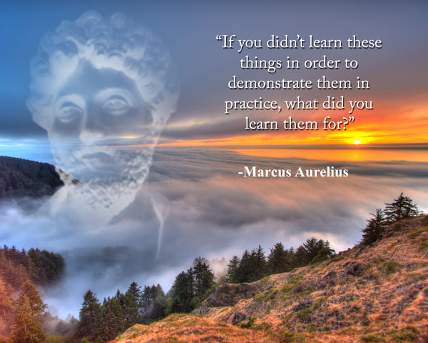 Marcus Aurelius If you didn't Poster, Print, Picture or Framed Photograph