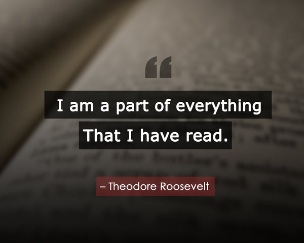 Theodore Roosevelt I Am A Poster, Print, Picture or Framed Photograph