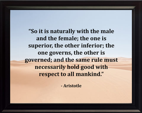 Aristotle So It Is Poster, Print, Picture or Framed Photograph