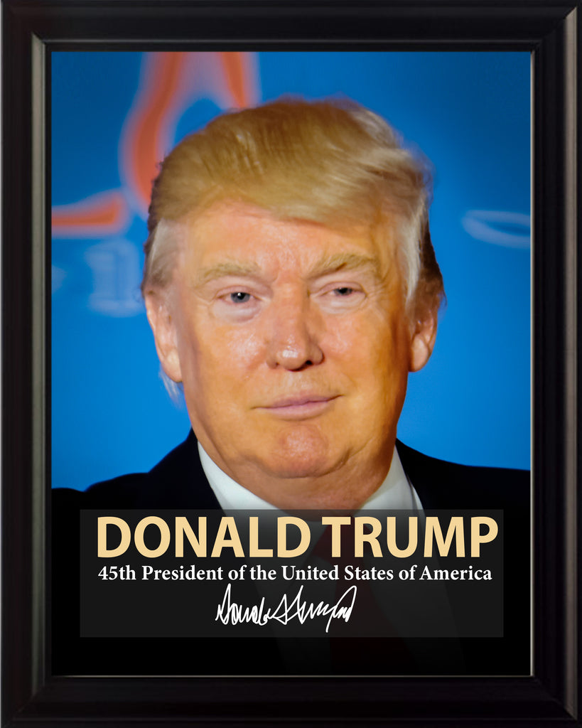 Donald Trump 45th President Poster, Print, Picture or Framed Photograph