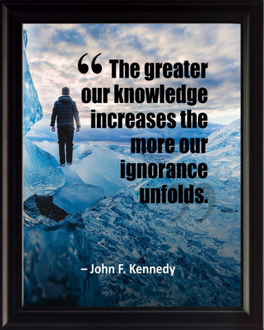 John F. Kennedy The Greater Our Poster, Print, Picture or Framed Photograph