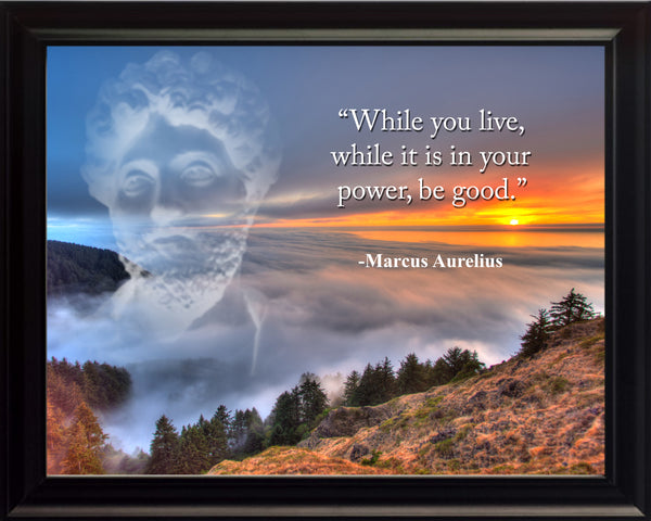 Marcus Aurelius While you live Poster, Print, Picture or Framed Photograph