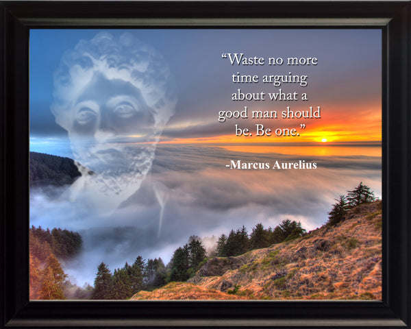 Marcus Aurelius Waste no more Poster, Print, Picture or Framed Photograph