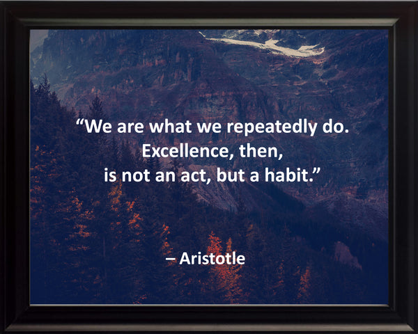 Aristotle We Are What Poster, Print, Picture or Framed Photograph