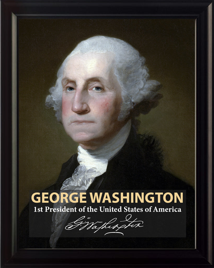 George Washington 1st President Poster, Print, Picture or Framed Photograph