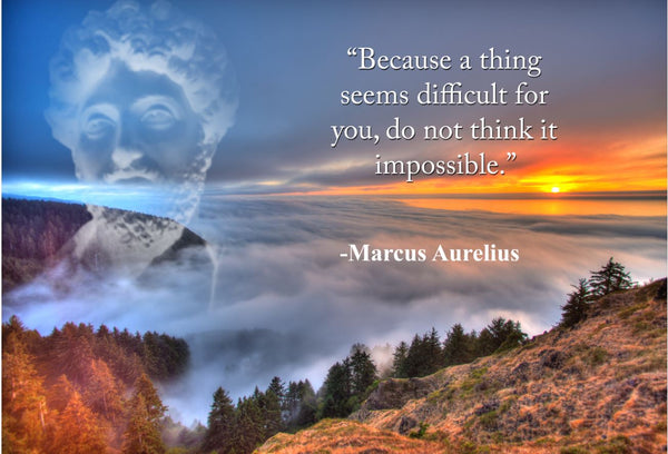Marcus Aurelius Because a thing Poster, Print, Picture or Framed Photograph