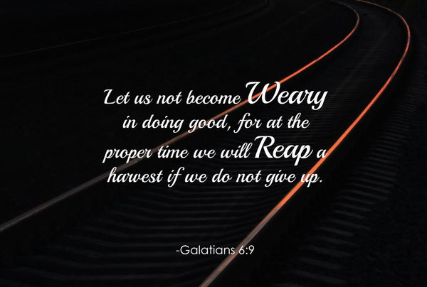 Galatians 6:9 Let Us Not Poster, Print, Picture or Framed Photograph