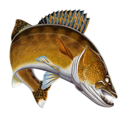 WALLEYE STICKER - JigHeads