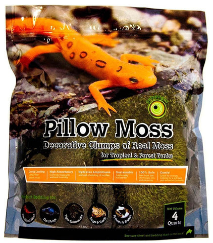Galapagos Pillow Moss Fresh Green Stand-Up Pouch 4qt - DubiaRoaches.com