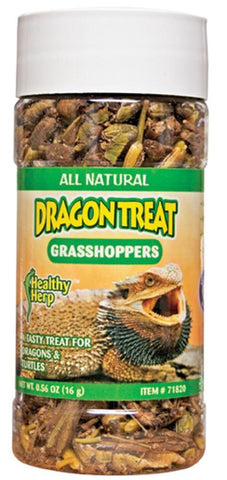 Healthy Herp Dragon Treat Grasshoppers 0.56oz - DubiaRoaches.com