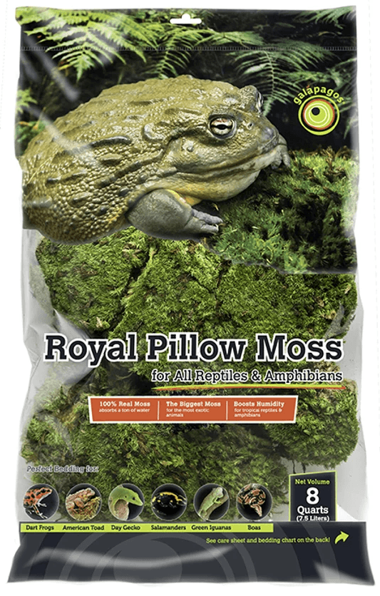 Galapagos Royal Pillow Moss, 150 in³