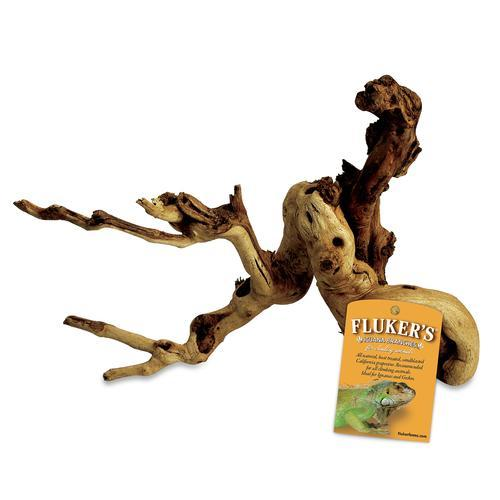 Fluker's Iguana Branch, Medium