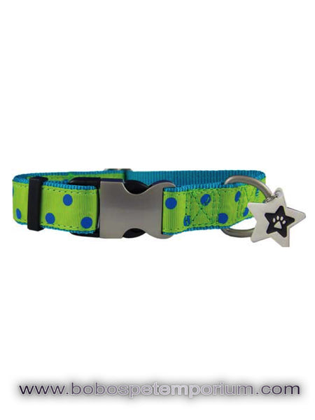 Pet Collars & Leads